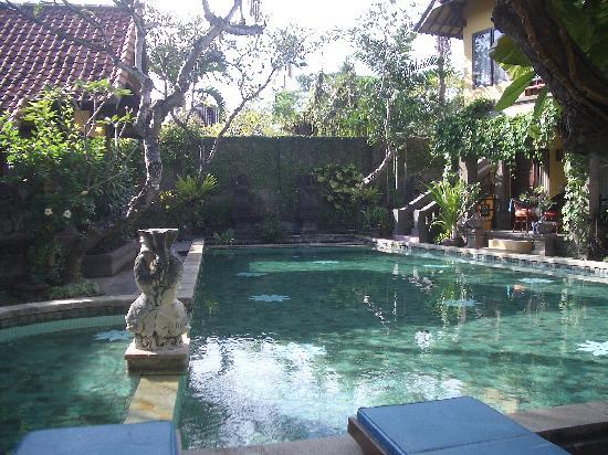 Puri Mesari Hotel & Suites: puri mesari pool