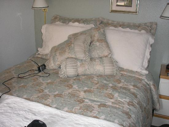 The North Shore Inn: queen sie bed