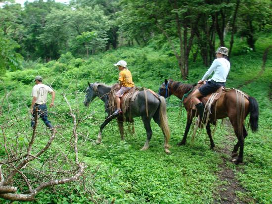 Finca Las Nubes: Riding horses on the farm