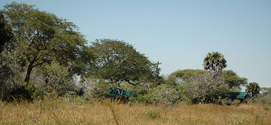Katavi National Park: Camp