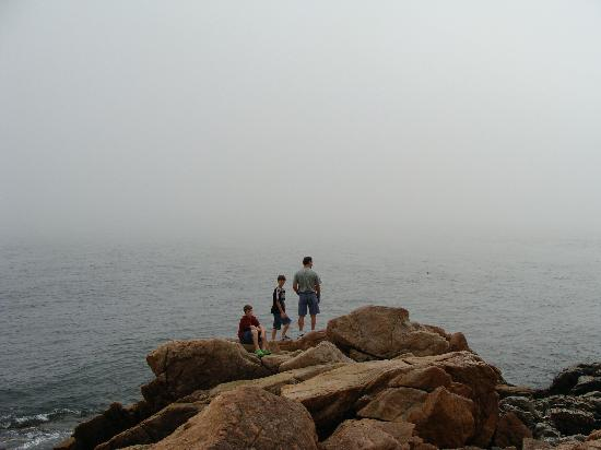 The Bayview: At Bass Harbor lighthouse - darn fog