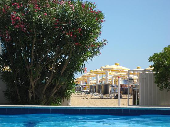 Ambasciatori Palace: View of beach from swimming pool
