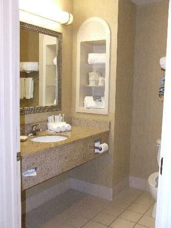 ‪‪Holiday Inn Express Hotel & Suites New Tampa I-75 Bruce B. Downs‬: Bathroom.‬