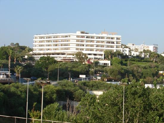 Alion Beach Hotel: Garden view