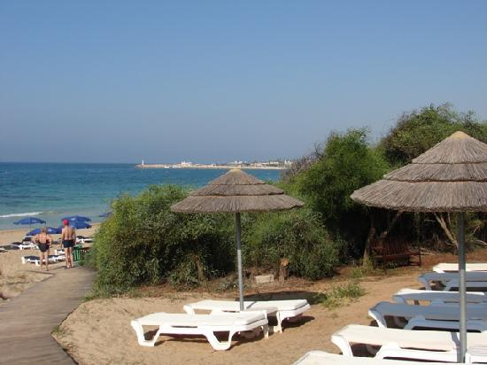 Alion Beach Hotel: Sunbeds