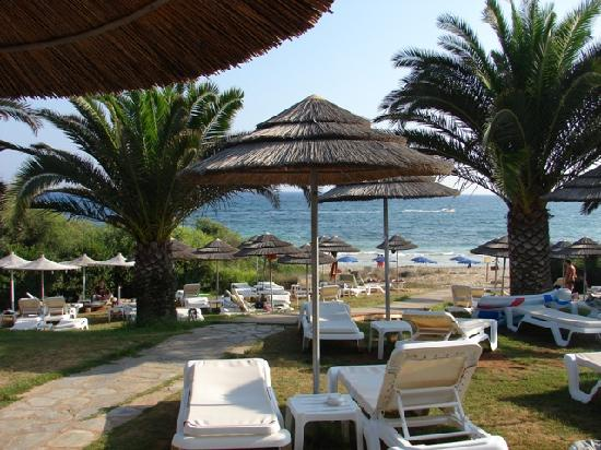 Alion Beach Hotel: Our sunbeds