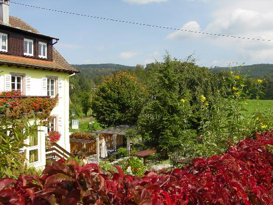Hotel Marchal : hotel