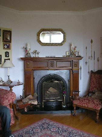 Shaminir B&B: Fireplace in the sitting room
