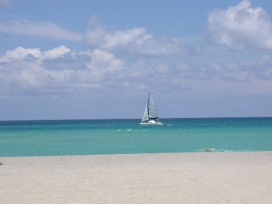 Manta Ray Inn: beach view from deck of hotel