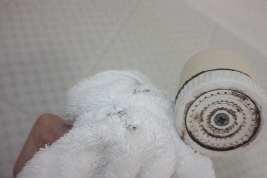 The Park hotel : ShowerHead