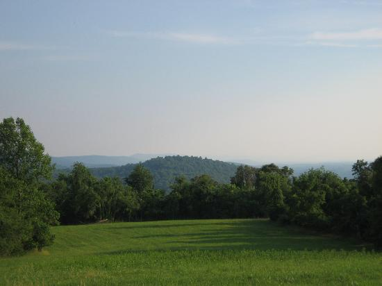 Antietam Overlook Farm: view of the meadow