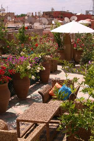 Dar Les Cigognes: Beautifully landscaped rooftop terrace