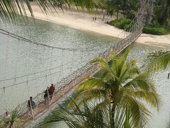 Palawan Beach: bridge