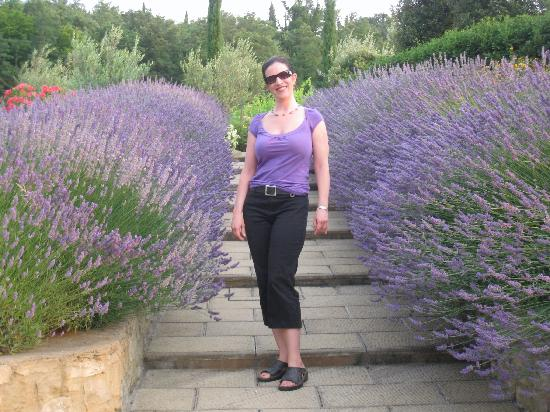 Casa Portagioia - Tuscany Bed and Breakfast: Lavendar walkway to pool