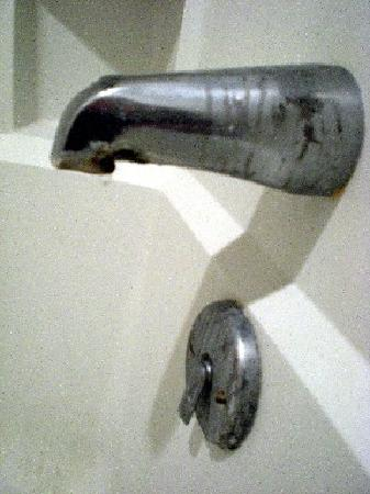 Rodeway Inn : Mold growing on the shower / tub faucet.