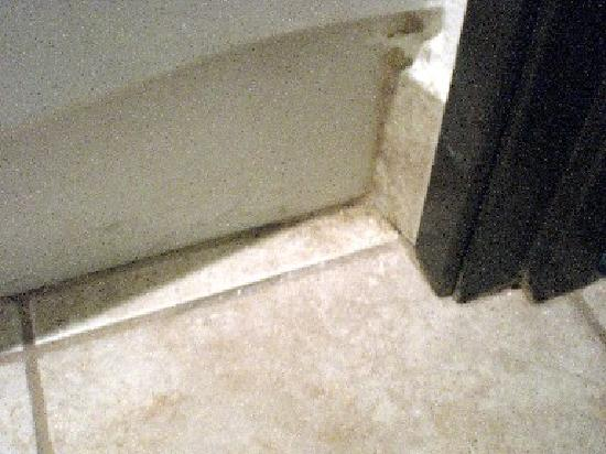 Road Star Inn - Madison : Dirt, mold, and hair on bathroom floor.