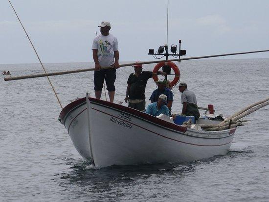 Azores, البرتغال: voyage aux açores été 2005