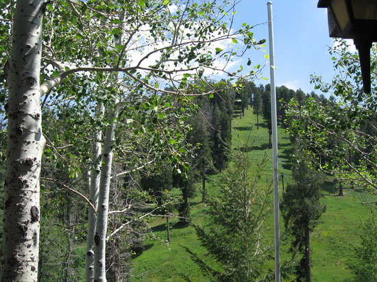 Mount Lemmon, AZ: the chair lift and green mountain side