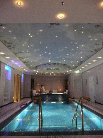 swimming pool picture of the ritz carlton berlin berlin tripadvisor. Black Bedroom Furniture Sets. Home Design Ideas