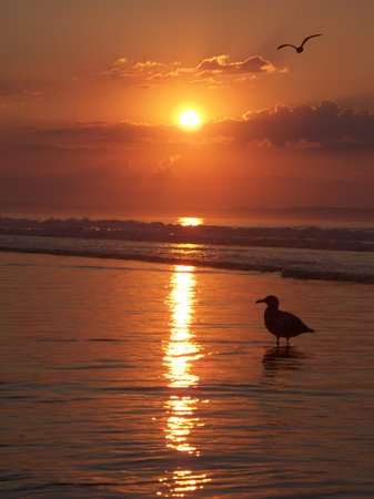 Old Orchard Beach, Мэн: The Sunrise