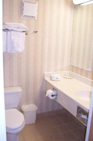 Comfort Suites Summit County: Bathroom - Room 241