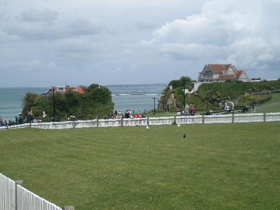 Newquay Breaks : View from town