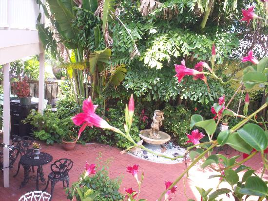 Sabal Palm House Bed and Breakfast Inn: the courtyard