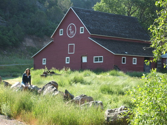 Four Mile Creek Bed and Breakfast: The restored 4 Mile Creek Barn