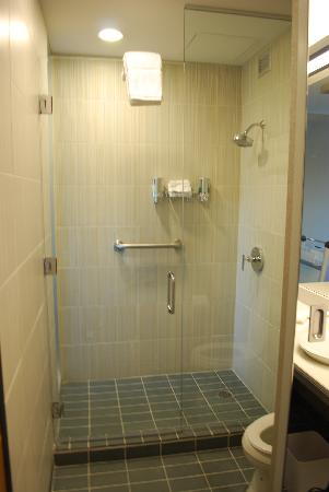 Aloft Montreal Airport : Shower Stall