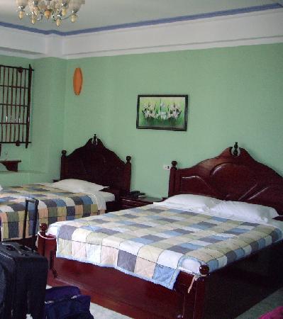 La Suisse Hotel: Room 101 $35