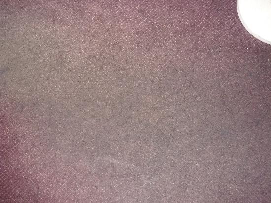 Anaheim Carriage Inn: carpet