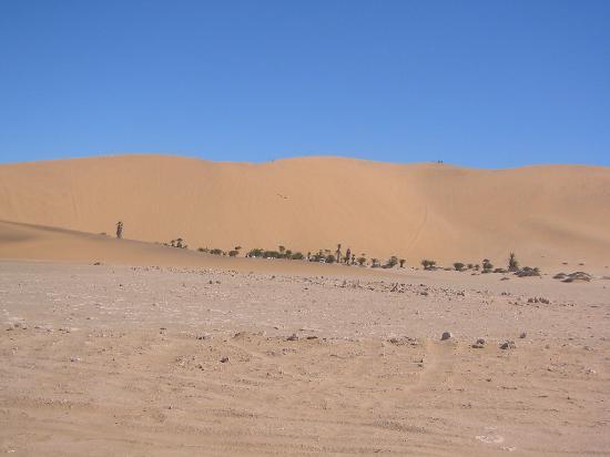 Swakopmund, Namibia: Düne 7