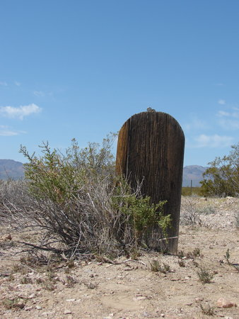 Beatty, NV: Rhyolite graveyard