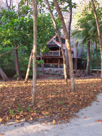 The Red Palm Villas: Hummingbird Villa