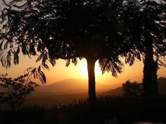 Agriturismo Le Colombe: sunset from the yard