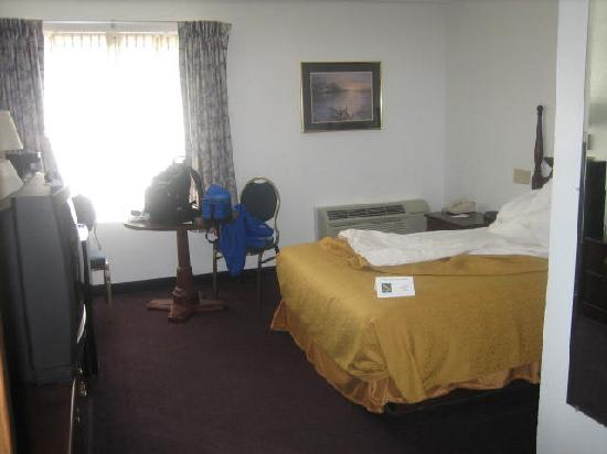Quality Inn & Suites Albany Airport: Uncomfortable room