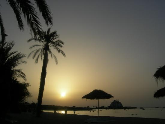 לטקיה, סוריה: Picture on the beach