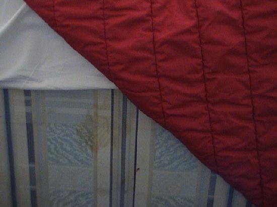 King's Cross Hotel: moldy mattress