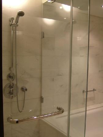 Hyatt Regency Kiev : the shower