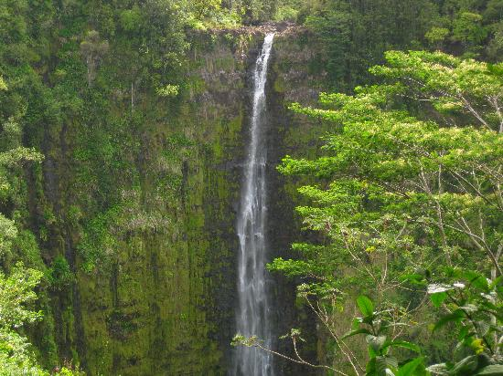 Vavoom Volcano Tours: The tallest waterfall in Hawaii