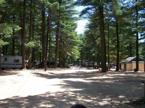 Ellis Haven Campground: sandy roads