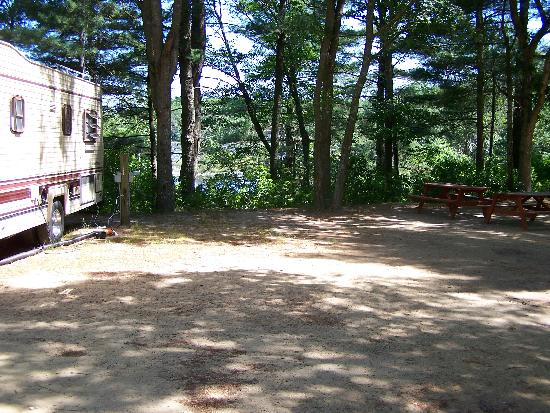 Ellis Haven Campground: shady site small and sandy