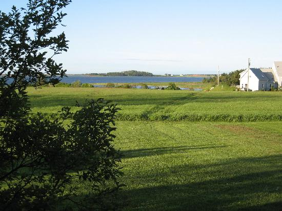York Bay Place: View from cottages-Beaumaris Centre is on the right hand side