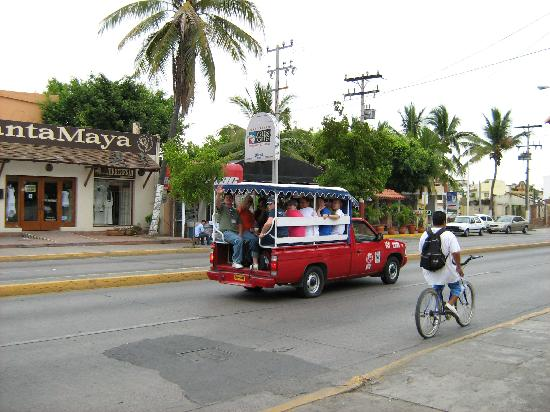 Margaritas Hotel & Tennis Club: Transportation, with Gus Gus in background