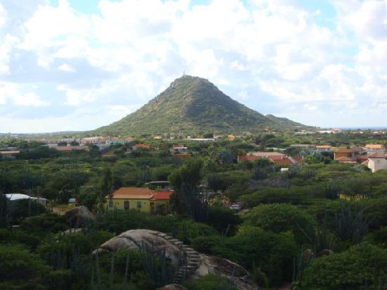 Aruba: what a view