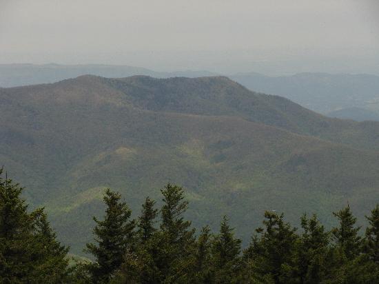 Mount Cammerer from Mount Sterling