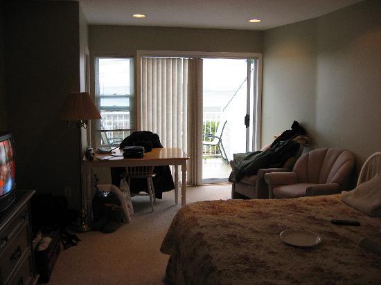 Buena Vista by the Sea: The Bedroom/Living Room area