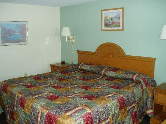 Knights Inn Palmyra/Hershey: King sized bed