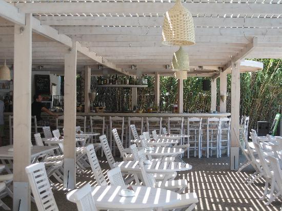Far-Out Village Hotel: Bar