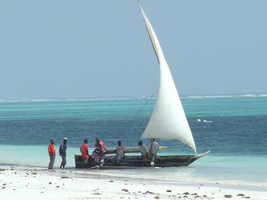 Archipel de Zanzibar, Tanzanie : Pongwe, Zanzibar
